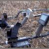 Metal Detecting – Dinosaurs